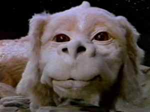 Falcor the Luck Dragon
