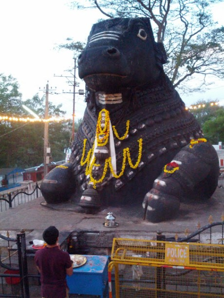 Nandi, Lord Shiva's bull.